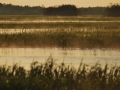2010-05-25_2823